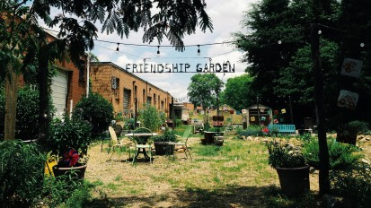 Friendship Gardens & Friendship Trays